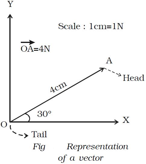Scalar And Vector Quantities Engineersfield