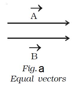 scalar and vector quantities pdf